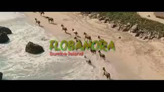 Gambar cover Wake up marapu band versi video short Flobamora marap gaura