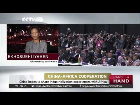 Forum on China Africa Cooperation Expert's Take