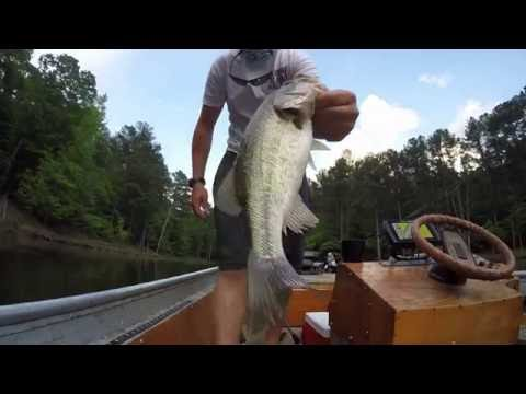 Mixed bag evening fishing falls lake raleigh nc youtube for Fishing in raleigh nc