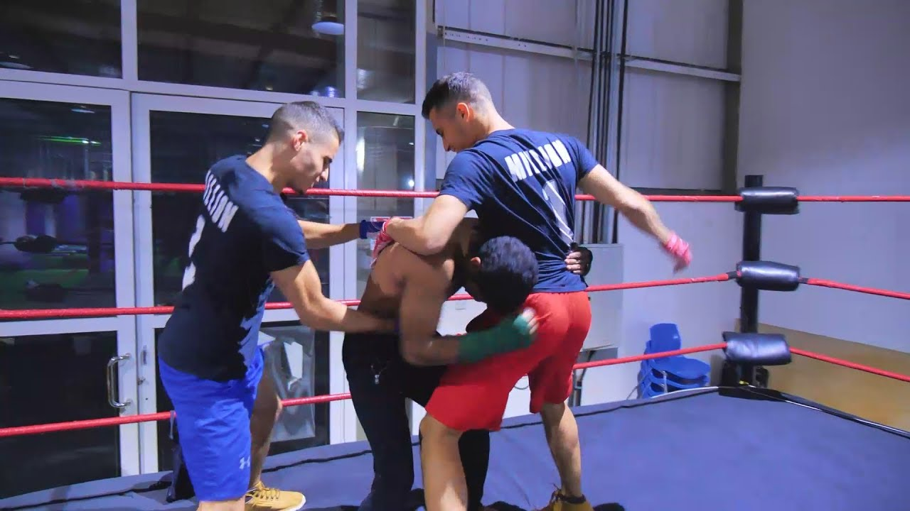 Download WWE MOVES IN THE RING 3