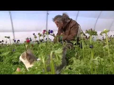 Prioriterre horticulture biologique avec Olivier Coince dans le verdon