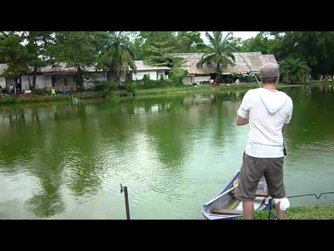 Fishing in Thailand (inc. Arapaima) Part 1 of 4