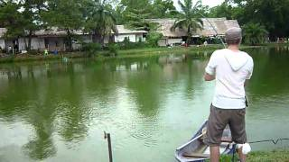 Fishing in Thailand (inc. Arapaima) Part 1 of 4