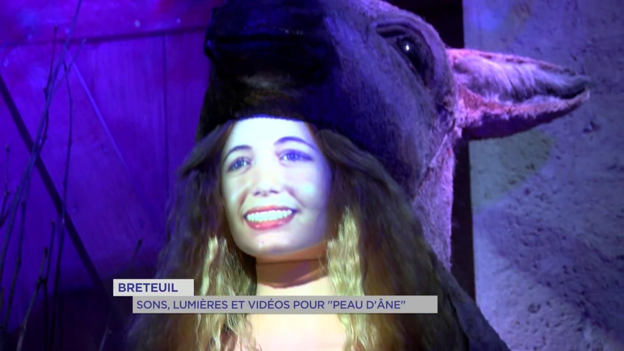 """Breteuil : sons, lumières et vidéos pour """"peau d'âne"""""""