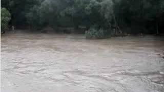 Р. Прут в Черновцах. Наводнение.