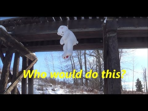 Spooky / Creepy stuffed animal found hanging from train tracks.Thorsby Alberta.