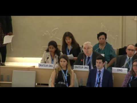 Prof. Gerald Steinberg at the UN Human Rights Council, Sep. 26, 2016