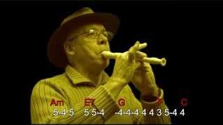 nº135 Angie ( The Rolling Stones ) tutorial armonica  C + chords guitar Mundharmonika