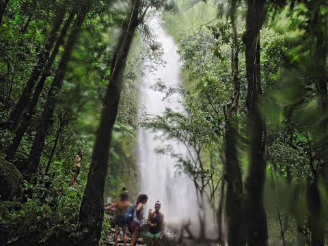 howzitboy hikes: Manoa falls flash flood
