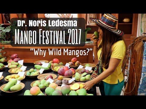 100+ Years Hunting for Mangos with Dr. Noris Ledesma (MangoFest @ Fairchild Tropical Gardens)