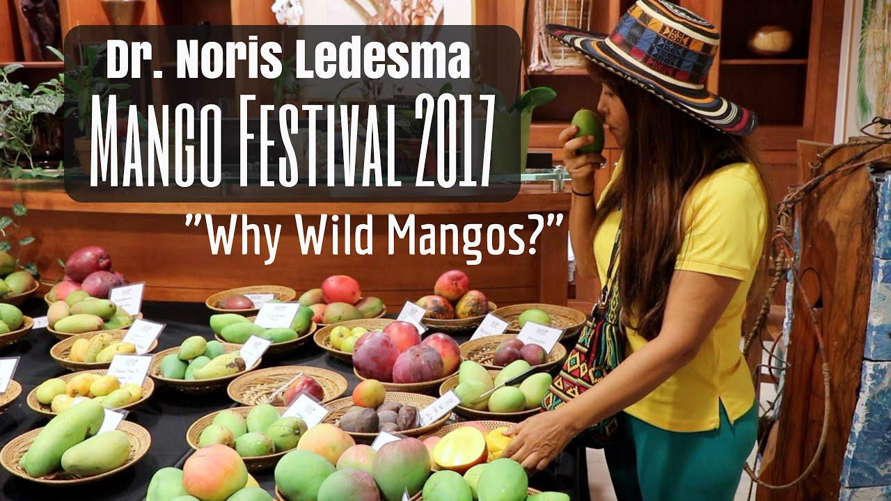 100+ Years Hunting for Mangos with Dr. Noris Ledesma (MangoFest ...