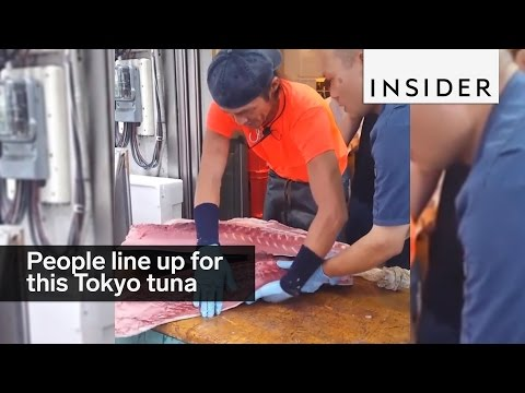 Tourists line up early for this Tokyo tuna auction