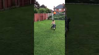 Dog And Kid Play With Balloon in Garden - 1067982
