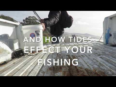 FISHING & CRAB SNARE, TIDES, CURRENTS, AND UNDERSTANDING COEFFICIENT