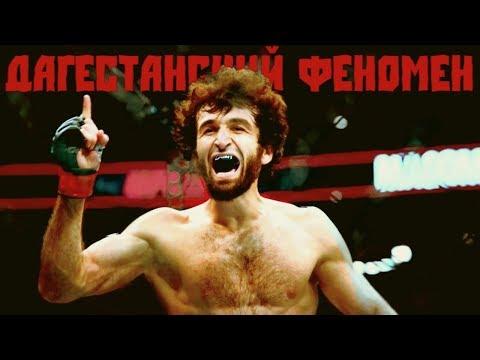 Видео: ДАГЕСТАНСКИЙ ФЕНОМЕН в ЮФС / Забит Магомедшарипов