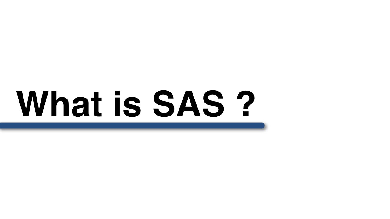 Download What is SAS