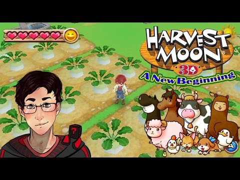 harvest moon a new beginning dating rod