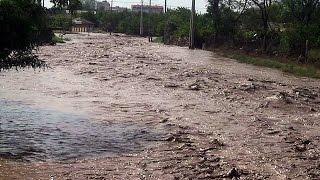 Крым, наводнение. Спасение собаки.