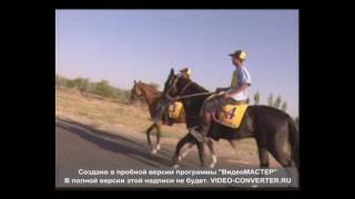 Конный пробег Хива-Бухара