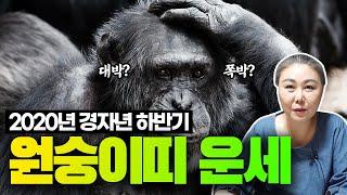 (경기광주용한점집)2020년 하반기 '원숭이띠 운세', '재주많은 잔나비'[29세, 41세, 53세, 65세…