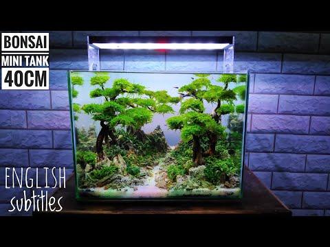 #163-membuat-bonsai-aquascape-mini-model-2-(-subtitle-english-)