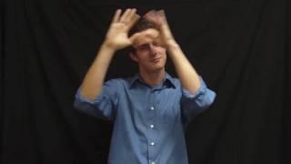 Alexander Rybak - Fairytale - ASL Song