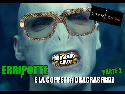 """RIASSUNTO ACCURATISSIMO HARRY POTTER """"ERRIPOTTE E LA COPPETTA DEL DRACRASFRIZZ"""" PT2"""