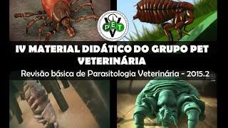 Ectoparasitas de Importância Veterinária - Carrapatos, Piolhos, Pulgas e Sarnas