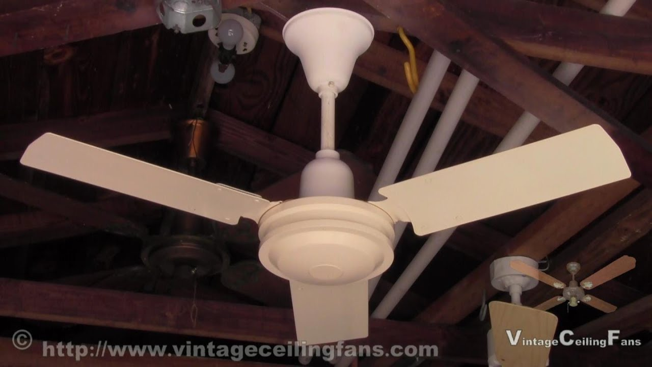 Safer mfg 36 inch 3 metal blade ceiling fan youtube safer mfg 36 inch 3 metal blade ceiling fan aloadofball Choice Image