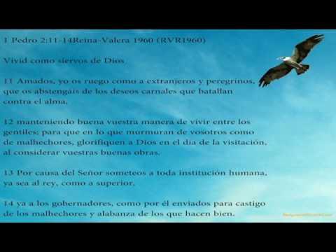 Eliezer Santiago - Una Iglesia con vision parte 3