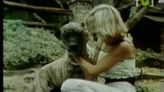 Olivia Newton-John - Jolene (1978)