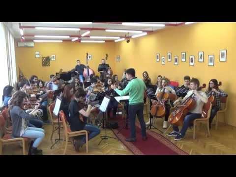 Edward Elgar - Serenade for strings in E minor, op.20