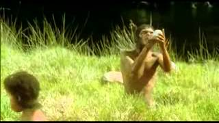Repeat youtube video Human Evolution by Miguel