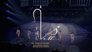 THE 2PM in TOKYO DOME ダイジェスト映像