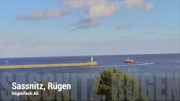 Webcam im Stadthafen von Sassnitz auf der Ferieninsel Rügen ist online