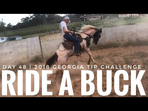 Day 48: 2018 Georgia Mustang TIP Challenge (Ride A Buck)