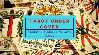 Under Cover Tarot ~ Madame Endora's Fortune Cards  - First Impressions