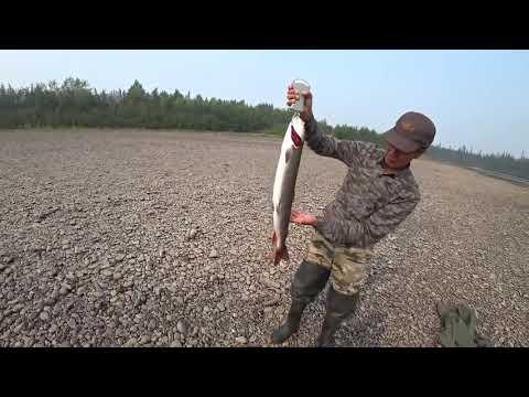 Супер рыбалка с ютуб каналом Охота и рыбалка в Якутии! Якутия Yakutia