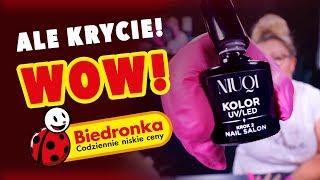 Quloo | Robię hybrydy na produktach z Biedronki