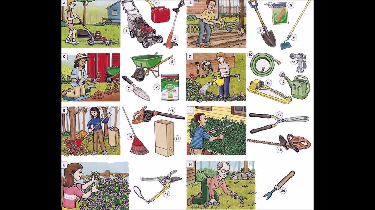 Garden tools garden actions and maintenance video english for Gardening tools 6 letters