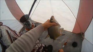 Подлёдная ловля леща. Иркутское водохранилище.