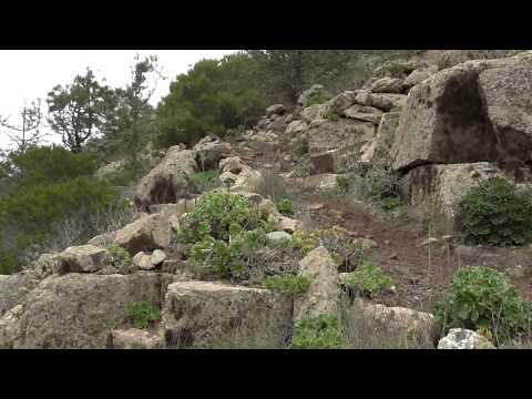Hike Lanzarote 4 - Haria - Barranco del Malpaso