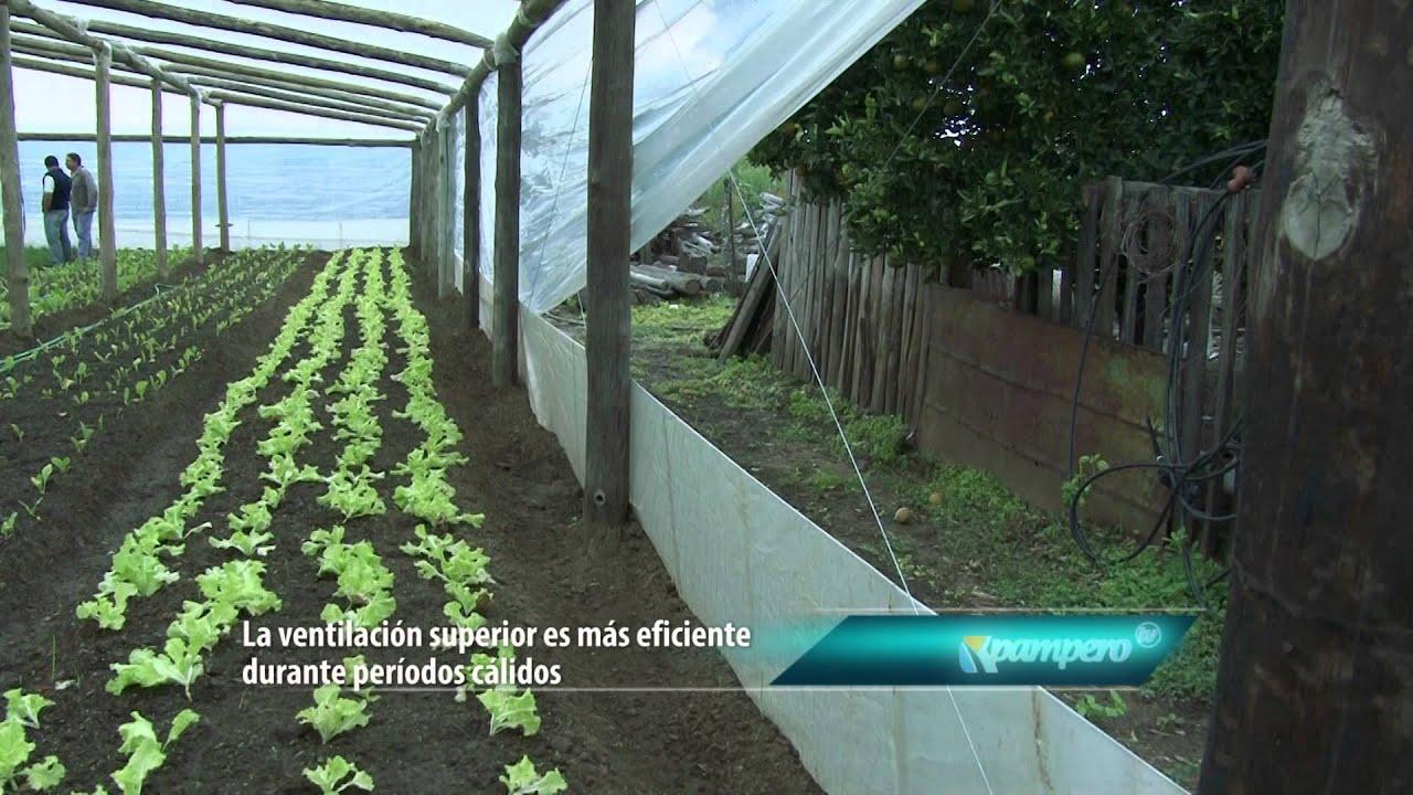 Construcci n de invernadero youtube for Construccion de viveros e invernaderos