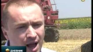 Dragin: Rod prosečan, cena pšenice pristojna thumbnail