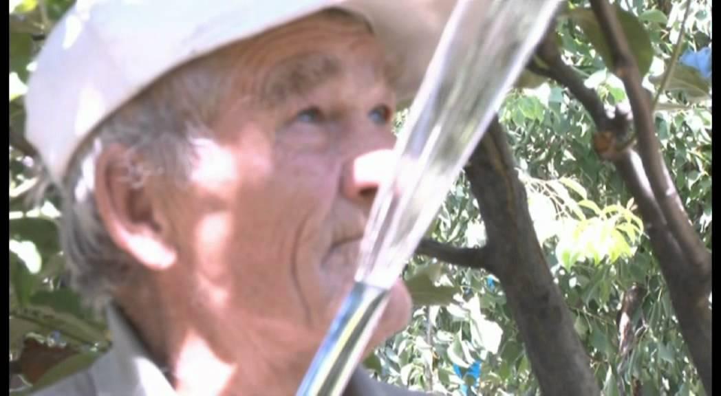 Дом престарелых мирный североморск интернат для престарелых