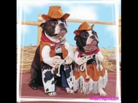 hommage a la musique country.wmv