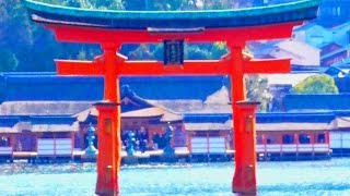 Всемирного наследия Японии Ицукусима (направления)