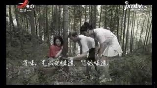 【江西哪里最好玩】明月山生活之旅 20181003