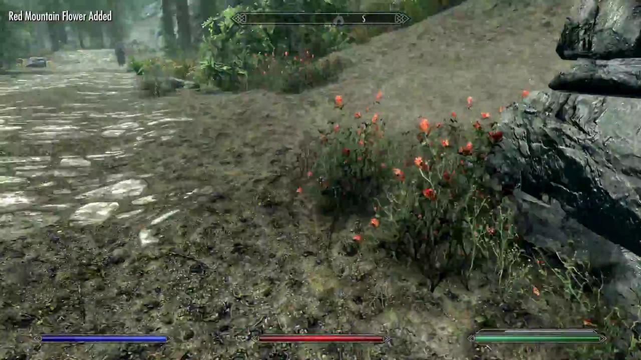 Red Mountain Flower Skyrim Beautiful Flowers 2018 Beautiful Flowers