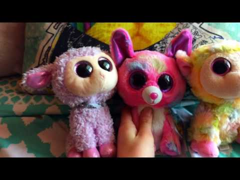 I'm doing a Q&A!~Beanie Boos For Days